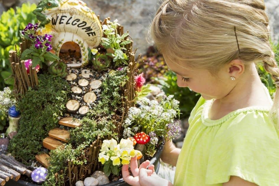 Fairy garden for fairy party