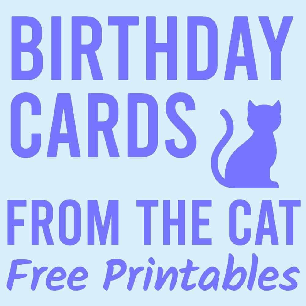 Happy Birthday from the cat