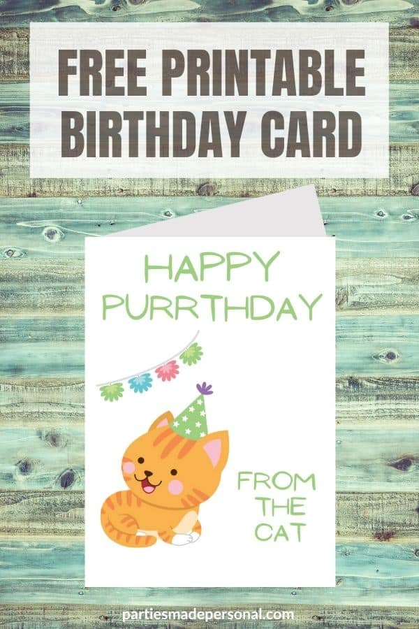 birthday cards from cats