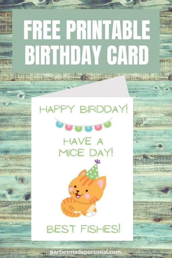 birthday cards from the cat