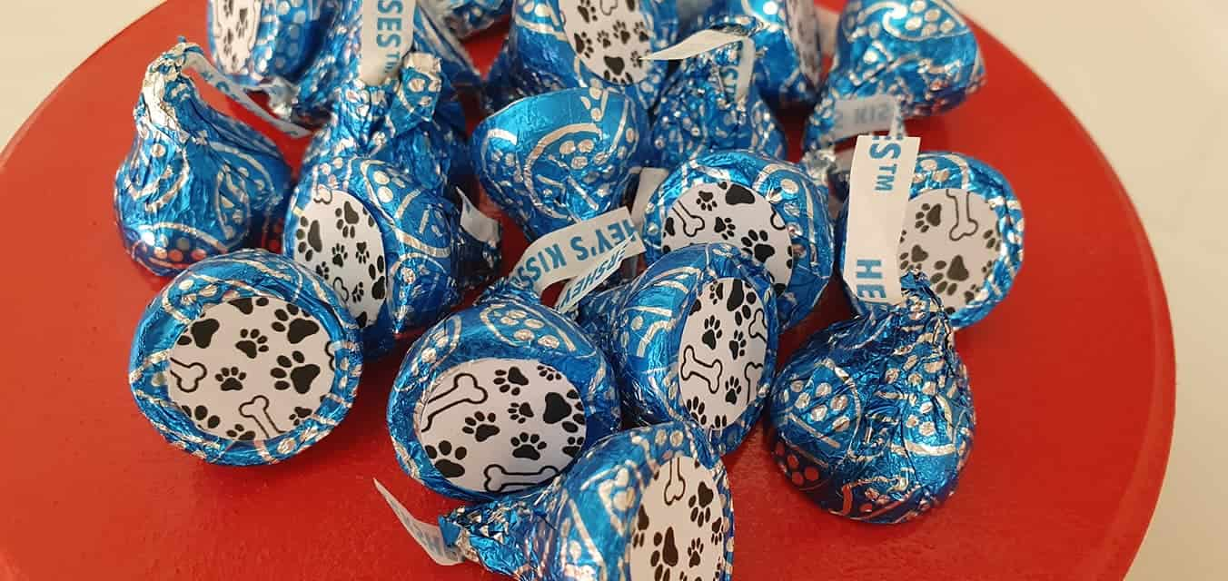 Paw Patrol Party Food Hershey's Kisses
